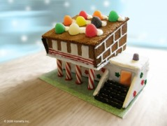 Ginger Bread Modern House